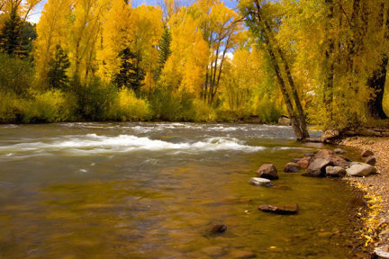 Conejos River Fly Fishing Guide
