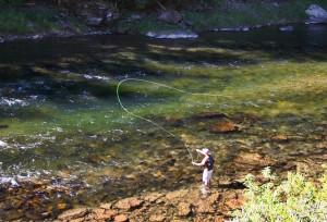 Conejos River Fly Fishing