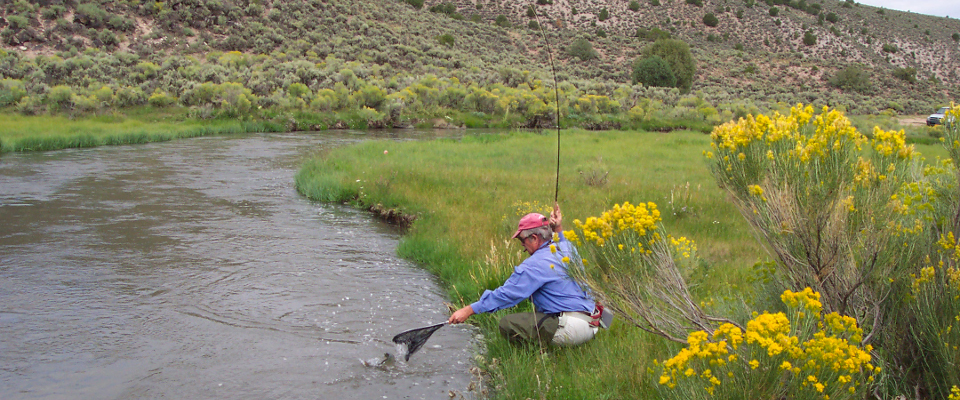 Conejos River Fly Fishing